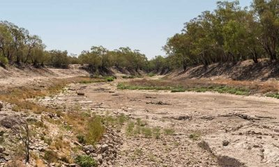 Darling River below Bourke Weir Courtesy Max Phillips Face